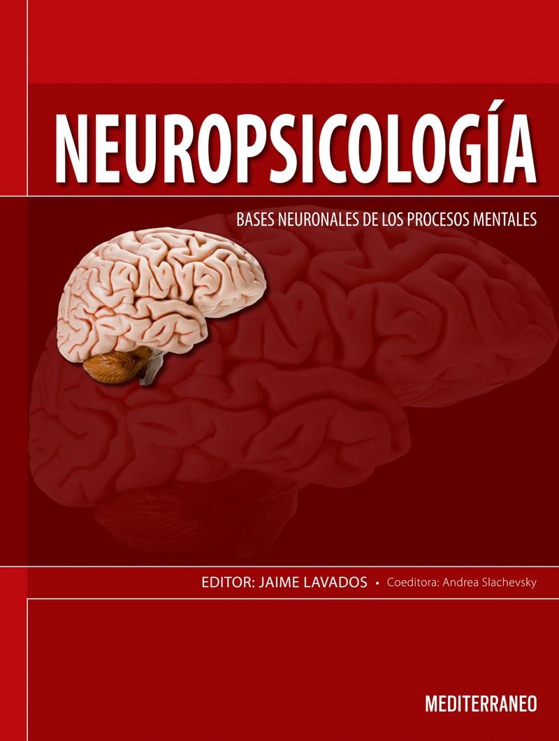 Neuropsicología. Bases...