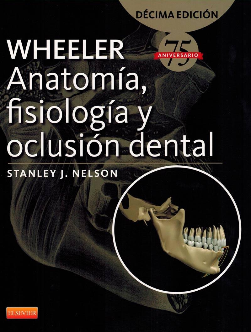 Wheeler. Anatomía,...