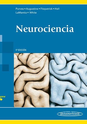 Neurociencia 5º Ed