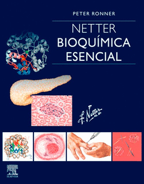 NETTER. BIOQUIMICA ESENCIAL