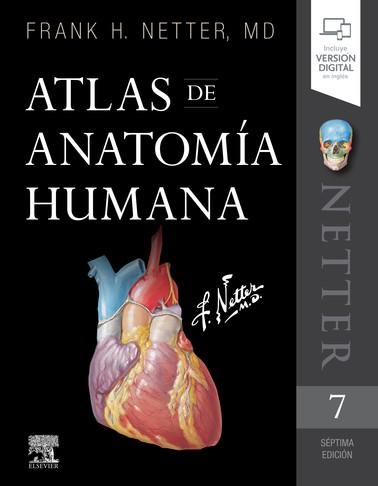 NETTER - ATLAS DE ANATOMIA...