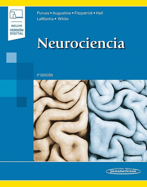 Neurociencia 5ª Ed + E