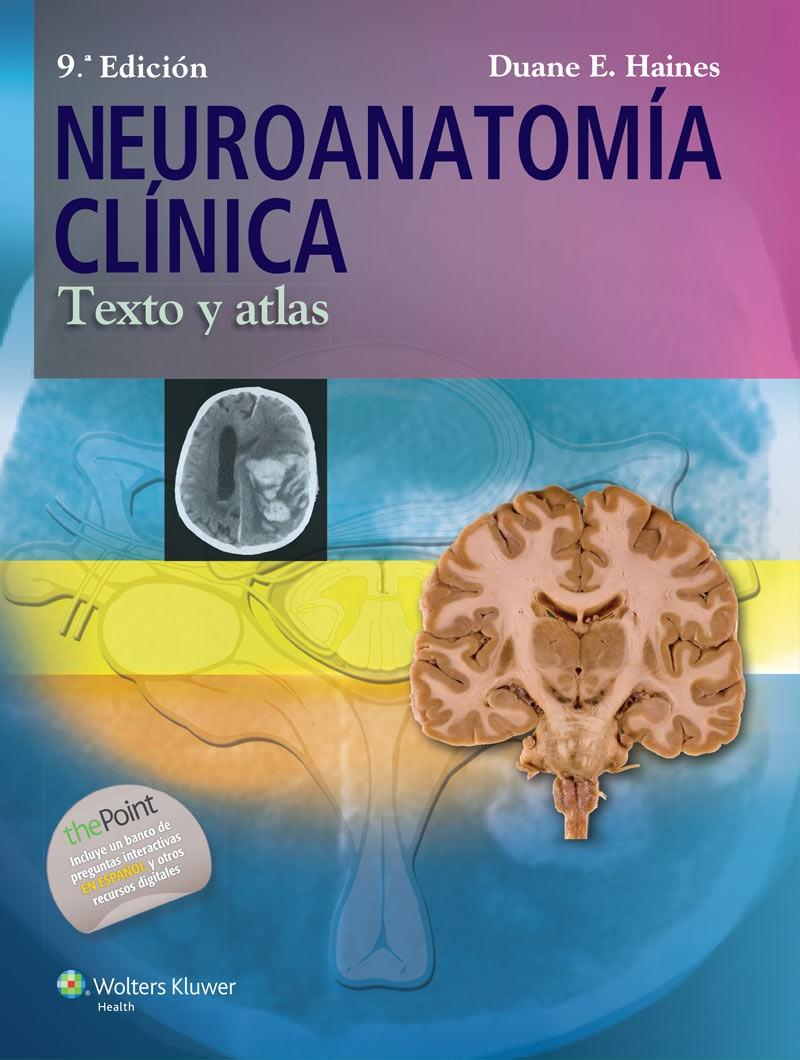 Neuroanatomía Clínica....