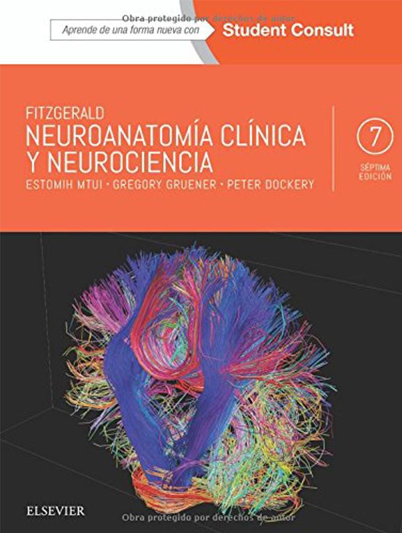 Neuroanatomía Clínica y...