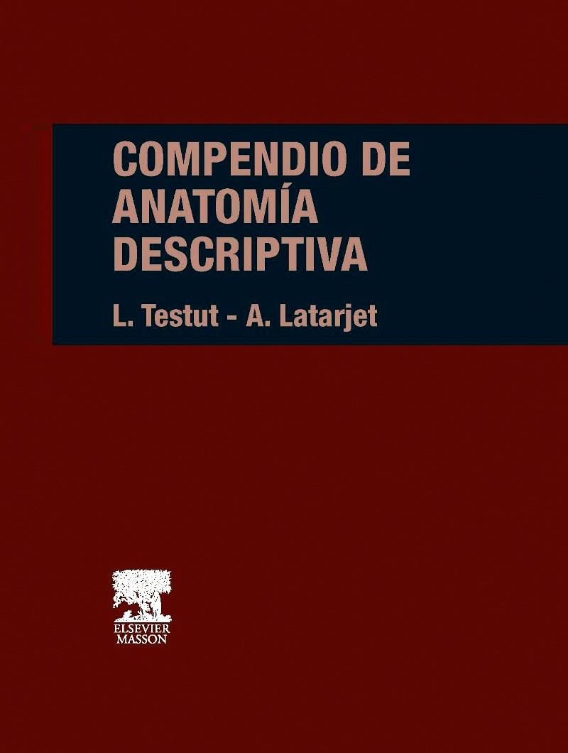 Compendio de Anatomía...