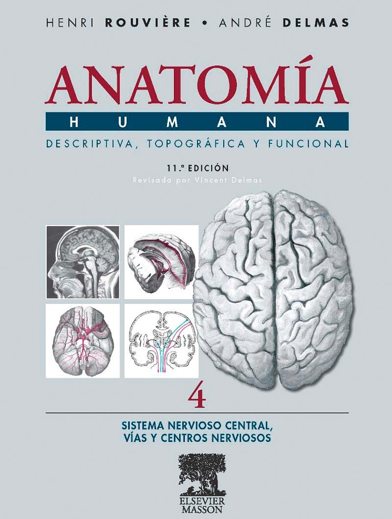 Anatomía Humana...